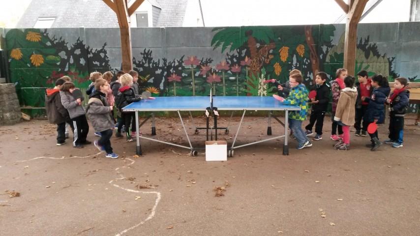 Ping-pong (1)