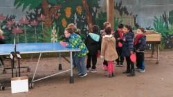Ping-pong (2)